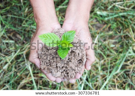 Hands holding green sprout with soil - stock photo