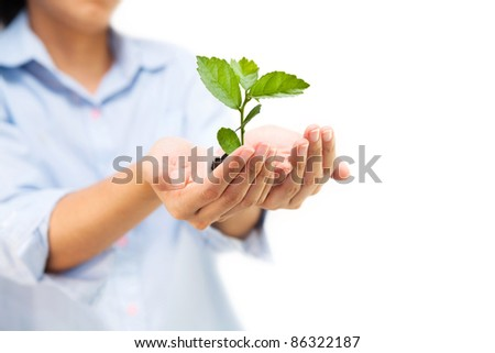 Hands holding green tree, can be used for go green concept - stock photo