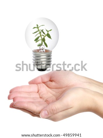 Hands holding light bulb - Ecology/Environment concept - stock photo