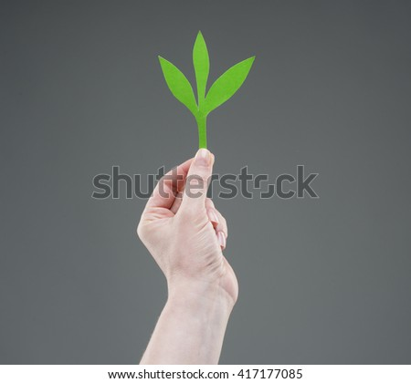 Hands holding paper green plant, isolated on white