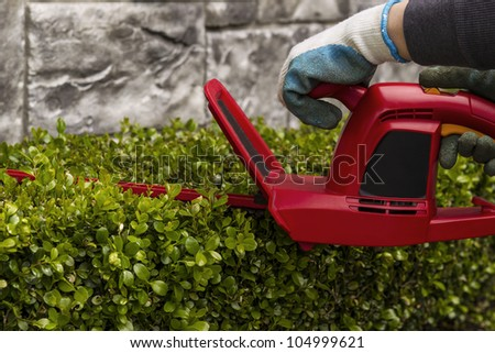 Hands holding power hedger while trimming hedges - stock photo