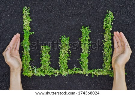 hands holding tree arranged as a green graph / csr / sustainable development / planting a tree