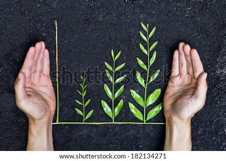 Hands holding tree arranged as a green graph on soil background / csr / sustainable development / planting a tree / corporate social responsibility - stock photo
