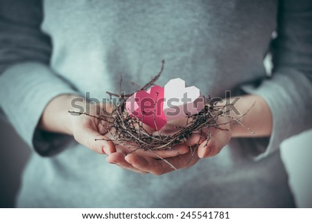 Hands holding two paper hearts in a small nest. Toned picture - stock photo