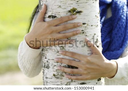 Hands hug a birch tree - stock photo