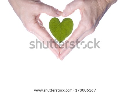 Hands in a heart shape surrounding a heart shaped leaf. - stock photo