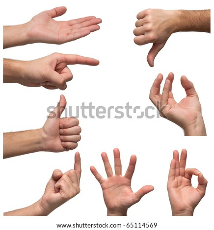 Hands in various positions - stock photo