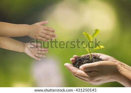 hands of a child taking a plant from the hands of a man with nature background. Ecology concept.