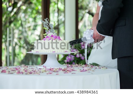 hands of bride and groom cut of a slice of a wedding cake - stock photo