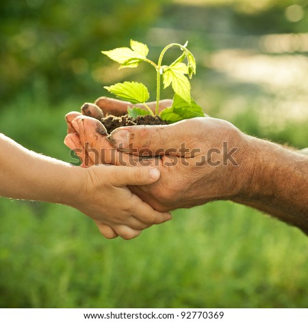 Hands of elderly man and baby holding a young plant against a green natural background in spring. Ecology concept - stock photo