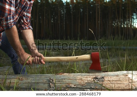 Hands of Lumberjack with Axe cut a Tree - stock photo