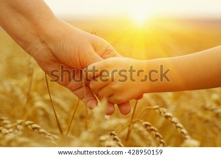 Hands of mother and daughter on sun. Holding each other on wheat field - stock photo