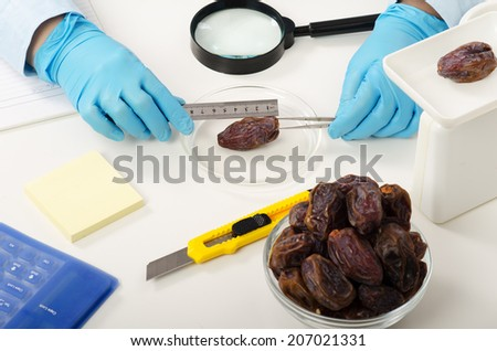 Hands of quality control expert measuring the date in the phytosanitary laboratory - stock photo