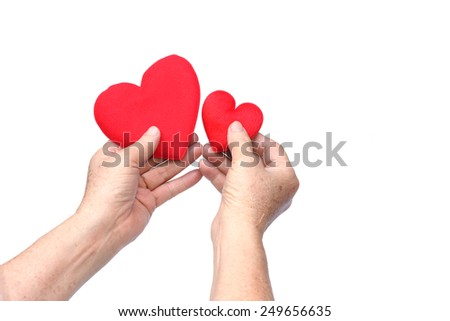 Hands of the elderly female holding a big and a small red hearts - stock photo