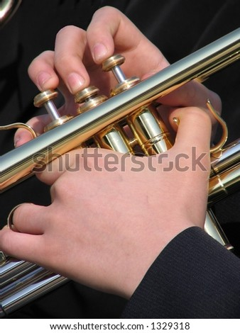 Hands of the musician - stock photo