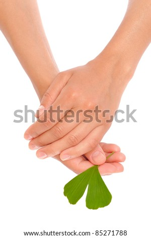 Hands of young woman holding ginkgo leaf - stock photo