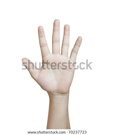 Hands on a white background - stock photo