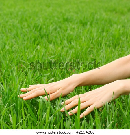 Hands over green grass