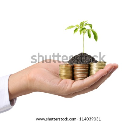 Hands Protect Your and plant - stock photo