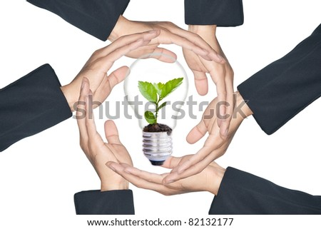 Hands protecting green tree in light bulb, isolate on white - stock photo