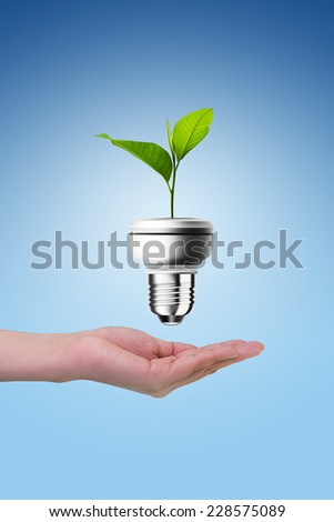 Hands protecting green tree in light bulb, with clipping path - stock photo