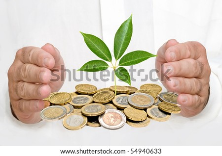 Hands protecting tree growing from pile of coins - stock photo
