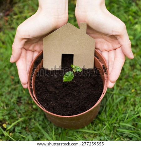Hands surrounding cardboard house growing from a pot full of soil - stock photo