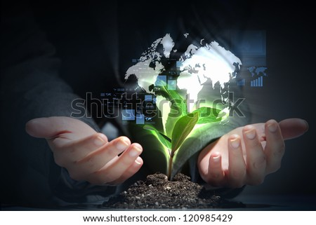 hands, the young sprout and our planet Earth - stock photo