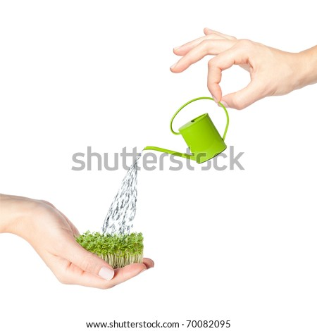 Hands watering grass with a small green watering can - stock photo