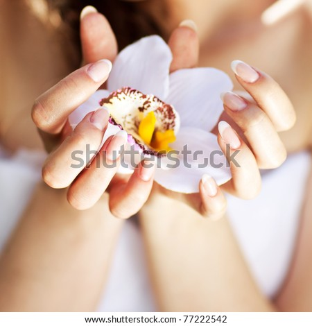 Hands with a manicure and orchid - stock photo