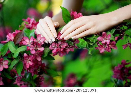 Hands with a stunning manicure on flowers - stock photo