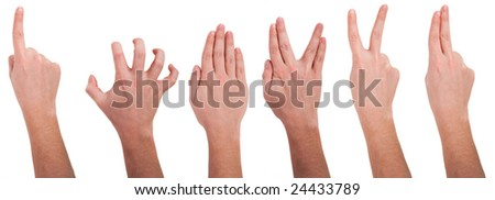 Hands with different gestures - stock photo