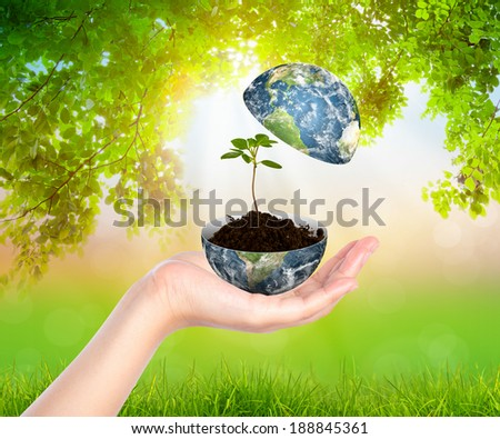 Hands with earth and tree (Elements of this image furnished by NASA) - stock photo