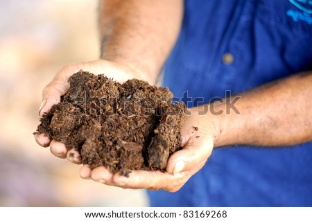 hands with soil - stock photo