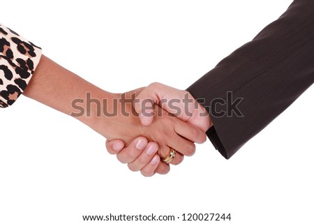 Handshake of men and women business. Isolated on white background
