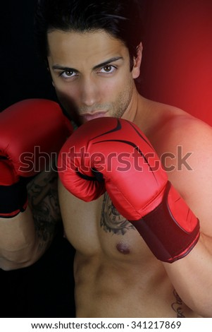 Handsome boxer - boxing