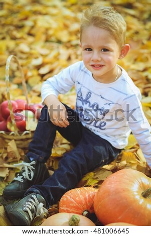 handsome boy in an autumn park with yellow leaves
