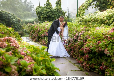 Handsome groom bending over bride at park - stock photo