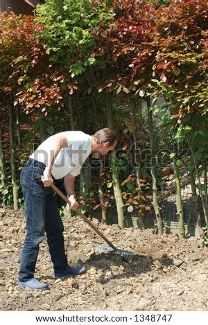 Handsome Middle aged man working in the garden,leveling the soil.