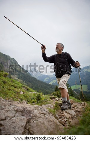 handsome senior man showing direction with his hiking stick while hiking outdoors in mountains - stock photo