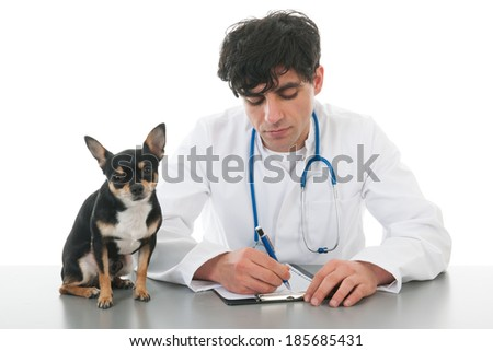 Handsome veterinarian with dog isolated over white background