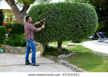 handsome young man gardener trimming and landscaping green bushes - stock photo
