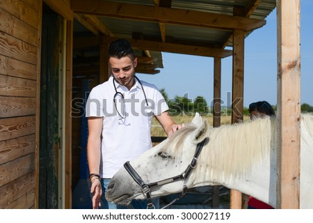 handsome young man veterinary taking care of beautiful white and gray camargue horse - stock photo