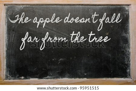 handwriting blackboard writings - The apple doesn't fall far from the tree - stock photo
