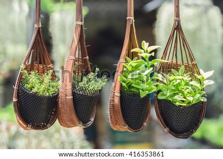 Hanging basket filled with flowers in garden - stock photo