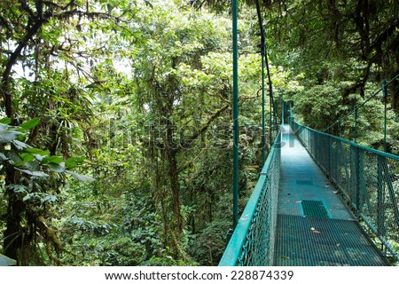 Hanging bridge. Costa Rica, Central America. Travel/vacation concept. Santa Elena Cloud Forest - stock photo