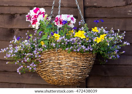 Hanging flower basket on wooden shed or wall