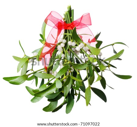 Hanging green mistletoe with a red bow. Isolated on white. - stock photo