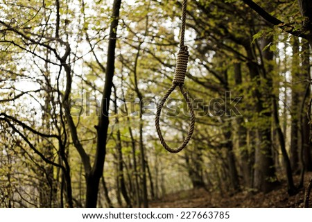 Hanging Noose at the wood. 02.11.2014 Czech Republic - stock photo