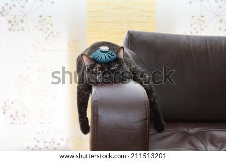 hangover - stock photo
